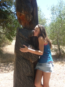 Bearhugs-Petrified Forest